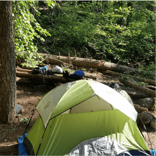 green backpacking tent in the forest