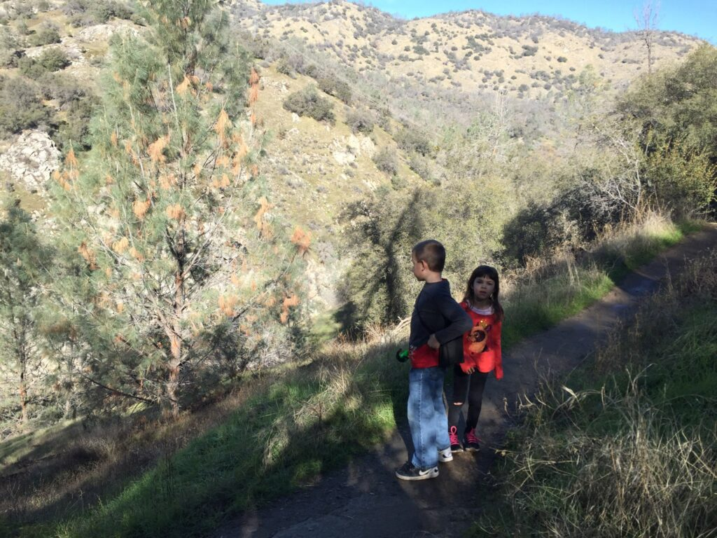 young boy and girl on a hiking trail in the mountians.