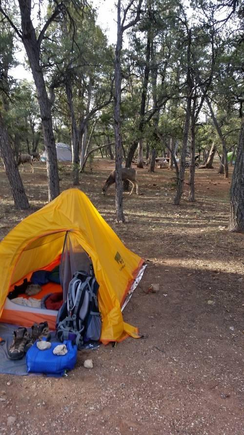 Camping at Grand Canyon