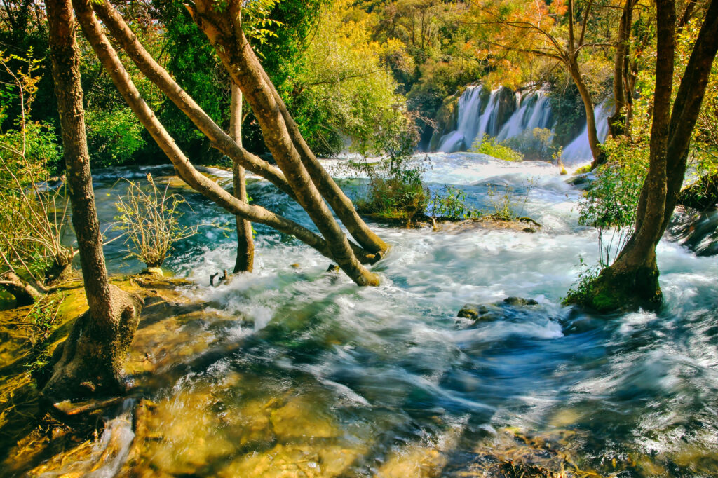 mountain stream with waterfall and trees with fall colored leaves.