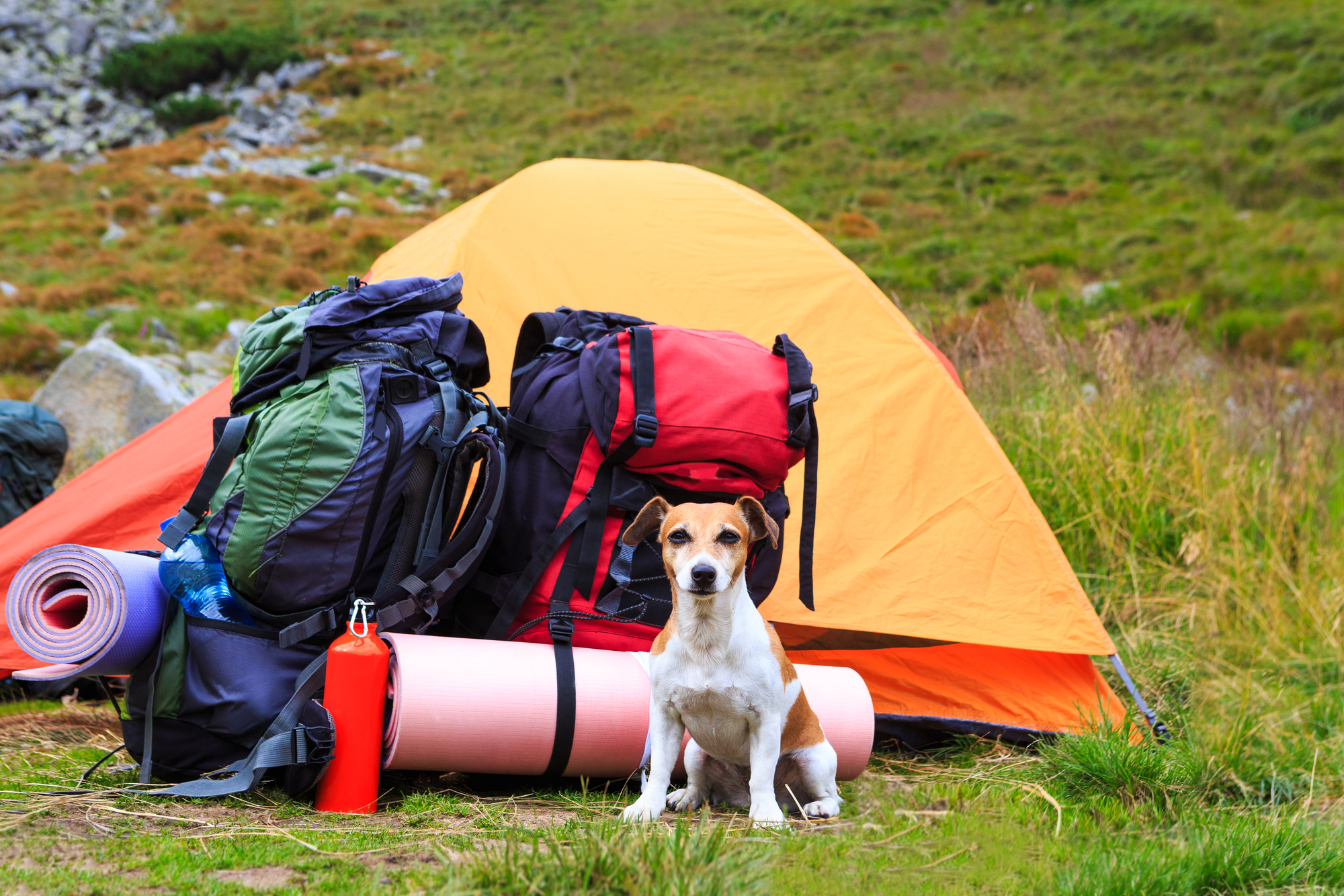 5 Ways To Get The Most Out Of Your Backcountry Gear